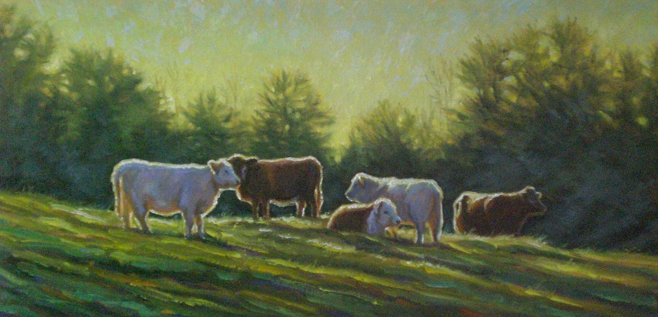 Beefalo_in_Summer_Light_at_Dawn_12x24.202151230_large